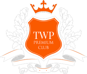 ThemeinWP INC
